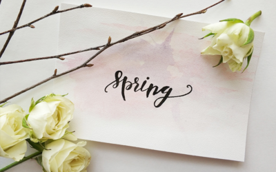 View our Spring retail specials